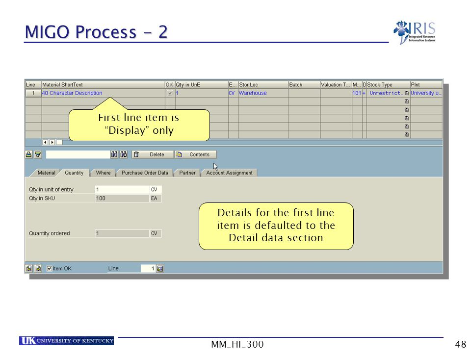 MM_HI_30048 MIGO Process - 2 First line item is Display only Details for the first line item is defaulted to the Detail data section