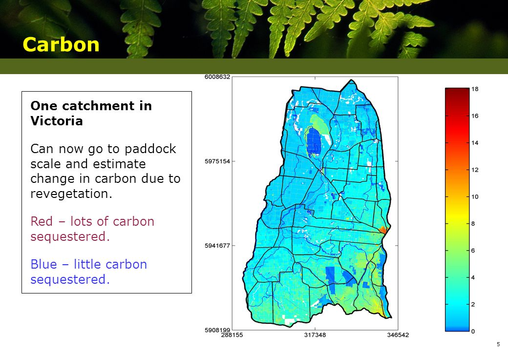 One catchment in Victoria Can now go to paddock scale and estimate change in carbon due to revegetation.