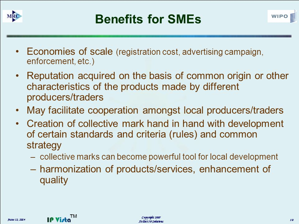 Benefits for SMEs Economies of scale (registration cost, advertising campaign, enforcement, etc.) Reputation acquired on the basis of common origin or other characteristics of the products made by different producers/traders May facilitate cooperation amongst local producers/traders Creation of collective mark hand in hand with development of certain standards and criteria (rules) and common strategy –collective marks can become powerful tool for local development –harmonization of products/services, enhancement of quality June 13, 2014 Copyright 2007 Xellect IP Solutions 10