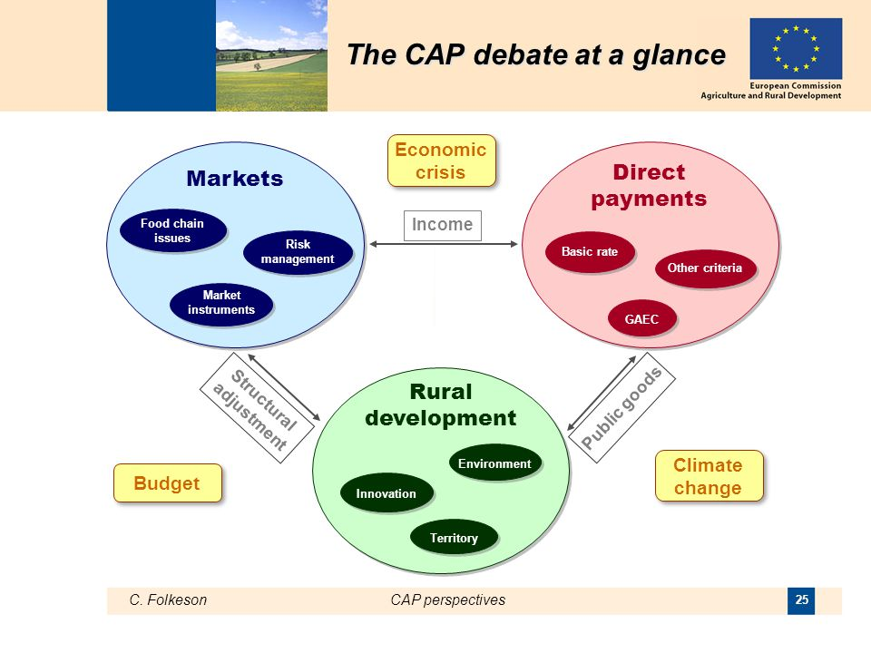 C. FolkesonCAP perspectives 25 Direct payments Basic rate Markets Rural development Innovation Environment Territory Income Structural adjustment Publ
