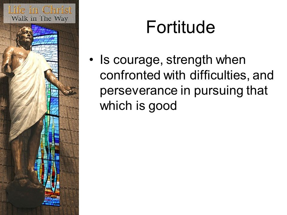 Fortitude Is courage, strength when confronted with difficulties, and perseverance in pursuing that which is good