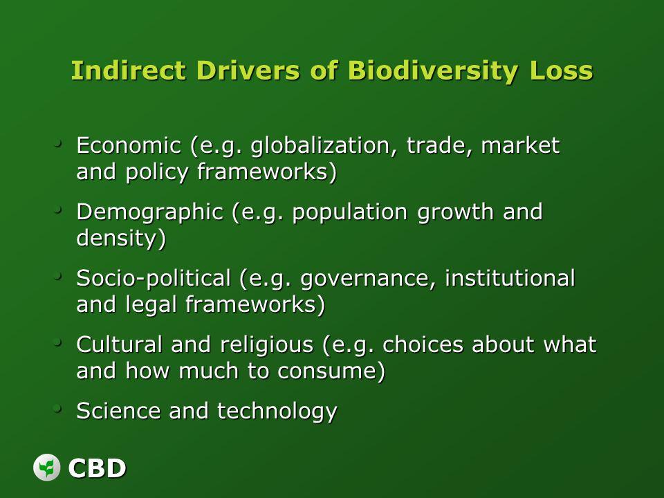 CBD Indirect Drivers of Biodiversity Loss Economic (e.g. globalization, trade, market and policy frameworks) Economic (e.g. globalization, trade, mark