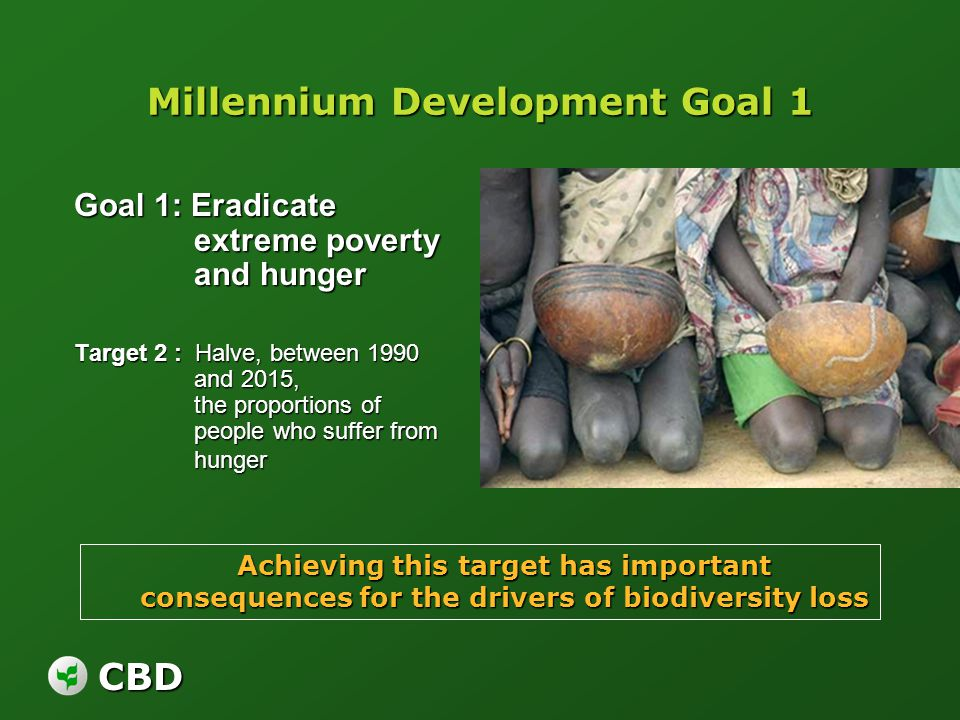CBD Millennium Development Goal 1 Goal 1: Eradicate extreme poverty and hunger Target 2 : Halve, between 1990 and 2015, the proportions of people who