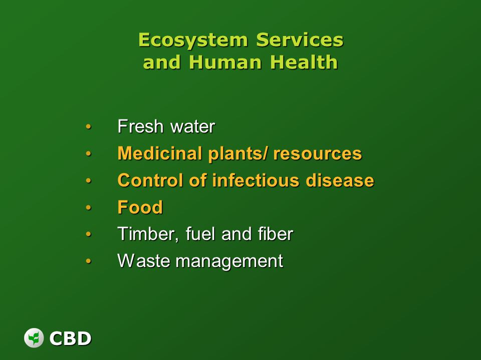 CBD Ecosystem Services and Human Health Fresh water Fresh water Medicinal plants/ resources Medicinal plants/ resources Control of infectious disease