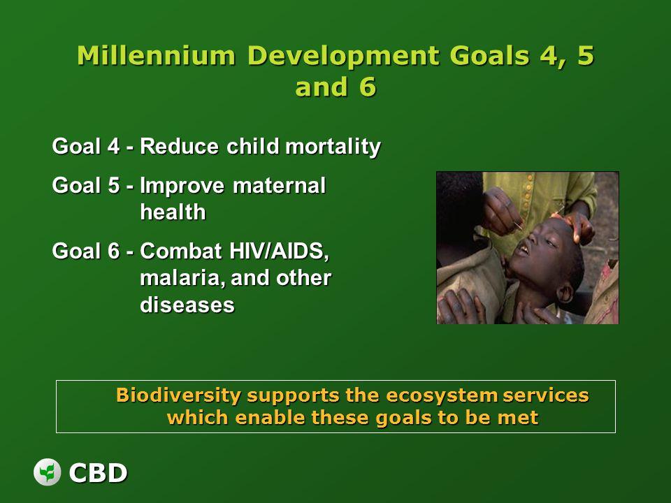 CBD Millennium Development Goals 4, 5 and 6 Goal 4 - Reduce child mortality Goal 5 - Improve maternal health Goal 6 - Combat HIV/AIDS, malaria, and ot