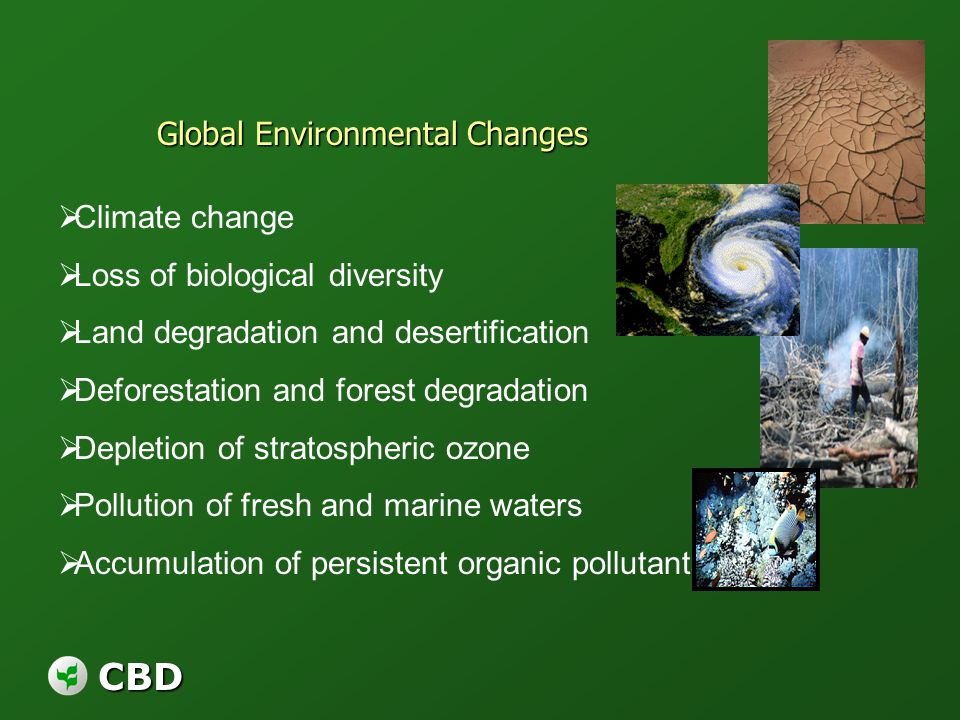 CBD Global Environmental Changes Climate change Loss of biological diversity Land degradation and desertification Deforestation and forest degradation