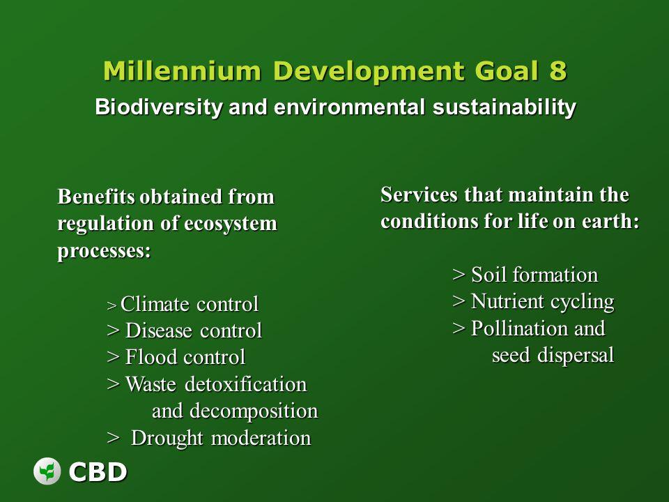 CBD Millennium Development Goal 8 Biodiversity and environmental sustainability Biodiversity and environmental sustainability Benefits obtained from r