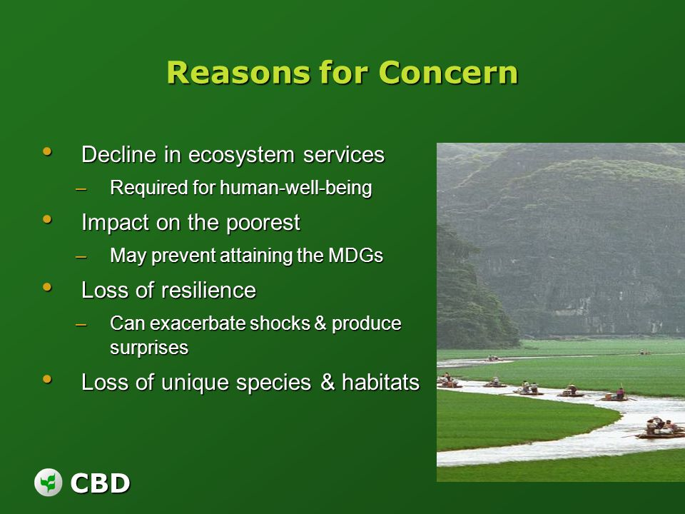 CBD Reasons for Concern Decline in ecosystem services Decline in ecosystem services –Required for human-well-being Impact on the poorest Impact on the