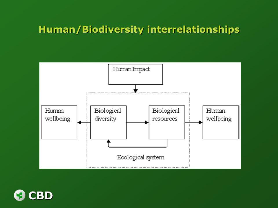 CBD Human/Biodiversity interrelationships