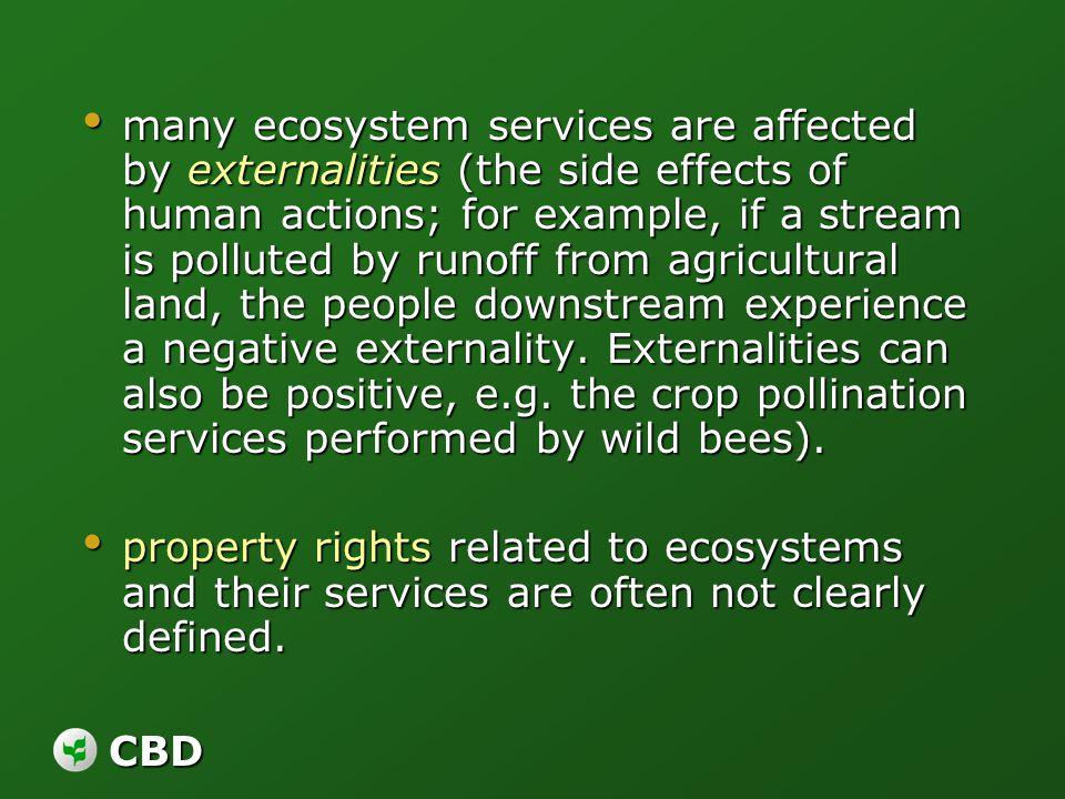 CBD many ecosystem services are affected by externalities (the side effects of human actions; for example, if a stream is polluted by runoff from agri