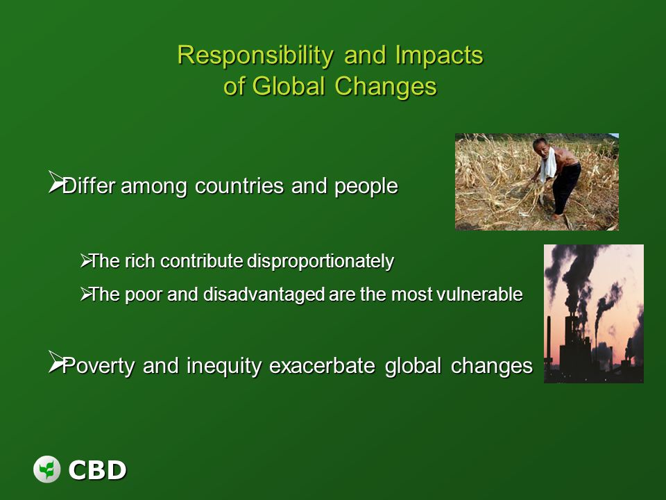 CBD Responsibility and Impacts of Global Changes Differ among countries and people Differ among countries and people The rich contribute disproportion