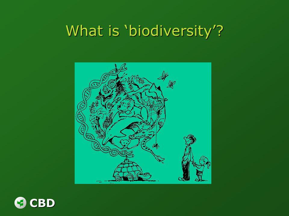 CBD What is biodiversity?
