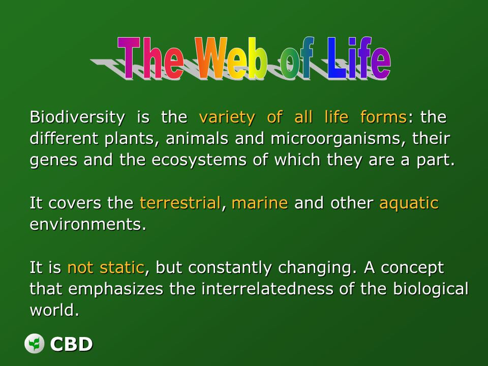 CBD Biodiversity is the variety of all life forms: the different plants, animals and microorganisms, their genes and the ecosystems of which they are