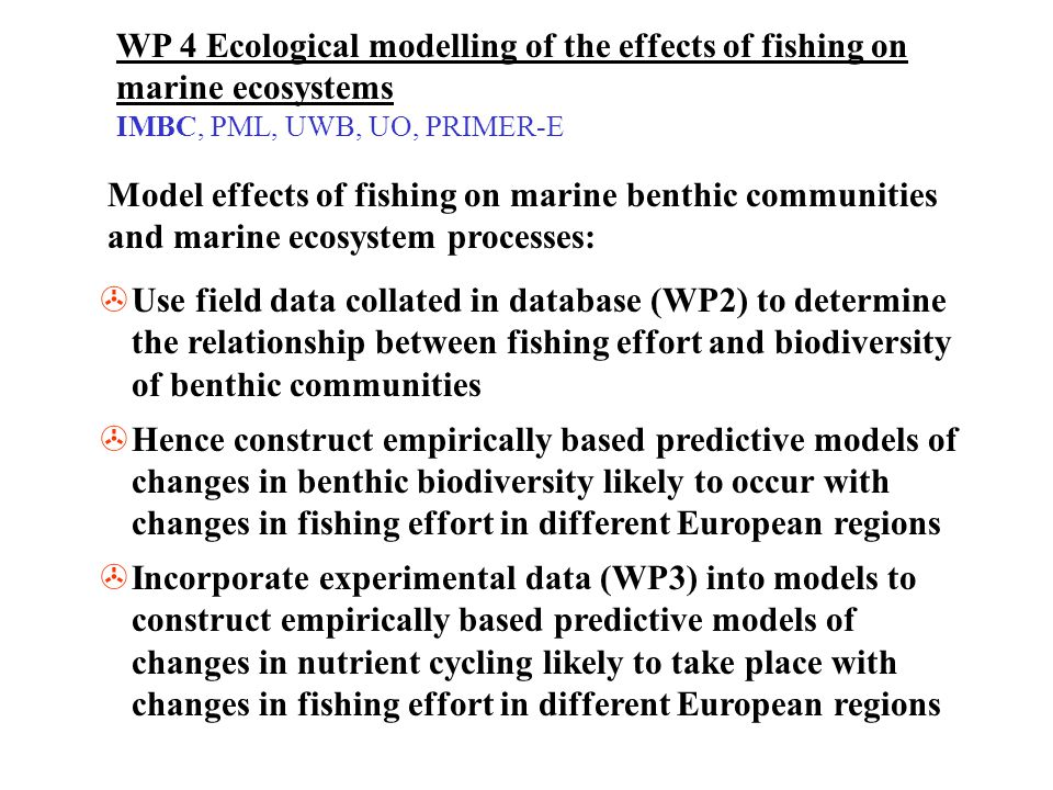WP 4 Ecological modelling of the effects of fishing on marine ecosystems IMBC, PML, UWB, UO, PRIMER-E >Use field data collated in database (WP2) to de