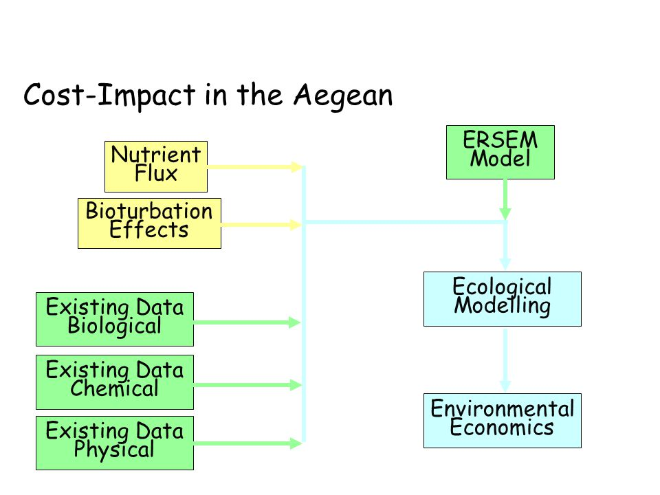 Bioturbation Effects Nutrient Flux Existing Data Biological Existing Data Chemical Existing Data Physical Environmental Economics Ecological Modelling ERSEM Model Cost-Impact in the Aegean