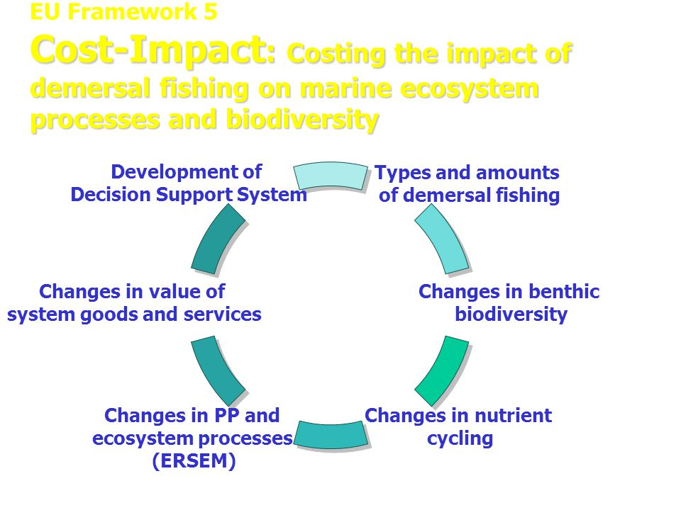 Cost-Impact : Costing the impact of demersal fishing on marine ecosystem processes and biodiversity EU Framework 5 Cost-Impact : Costing the impact of