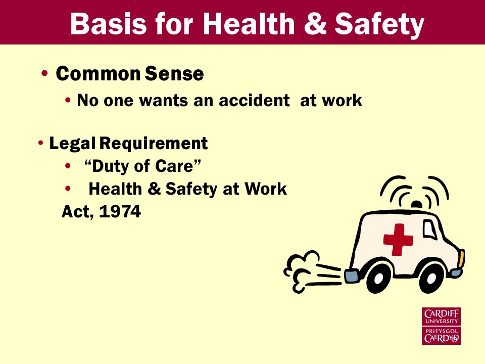 Basis for Health & Safety Common Sense No one wants an accident at work Legal Requirement Duty of Care Health & Safety at Work Act, 1974
