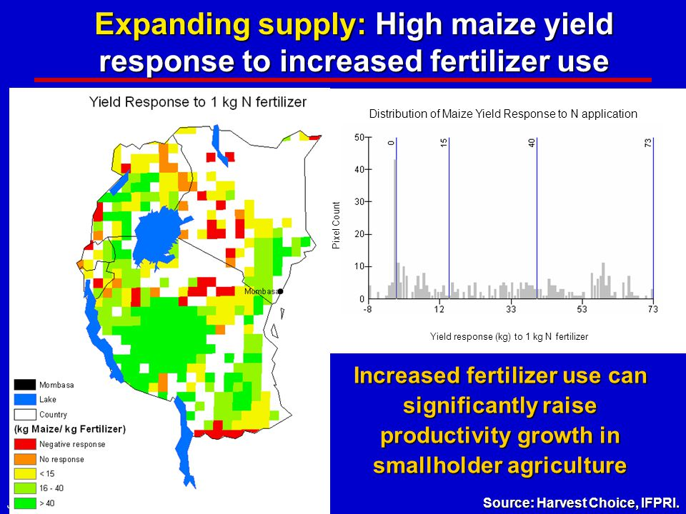 Joachim von Braun, IFPRI, April 2008 Expanding supply: High maize yield response to increased fertilizer use Yield response (kg) to 1 kg N fertilizer Pixel Count Distribution of Maize Yield Response to N application Increased fertilizer use can significantly raise productivity growth in smallholder agriculture Source: Harvest Choice, IFPRI.