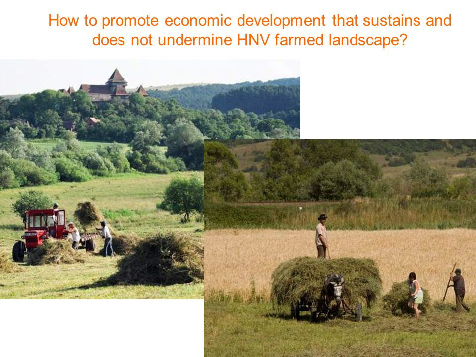 How to promote economic development that sustains and does not undermine HNV farmed landscape