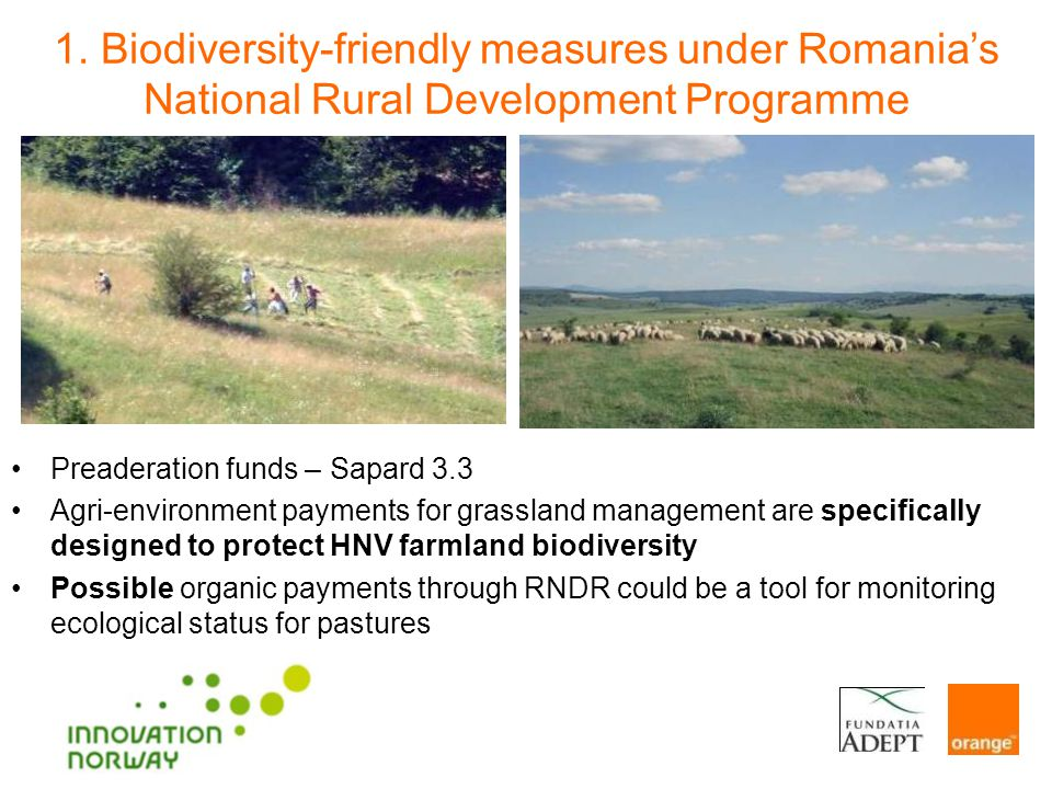 Preaderation funds – Sapard 3.3 Agri-environment payments for grassland management are specifically designed to protect HNV farmland biodiversity Possible organic payments through RNDR could be a tool for monitoring ecological status for pastures 1.
