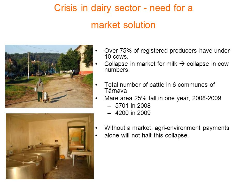 Crisis in dairy sector - need for a market solution Over 75% of registered producers have under 10 cows.