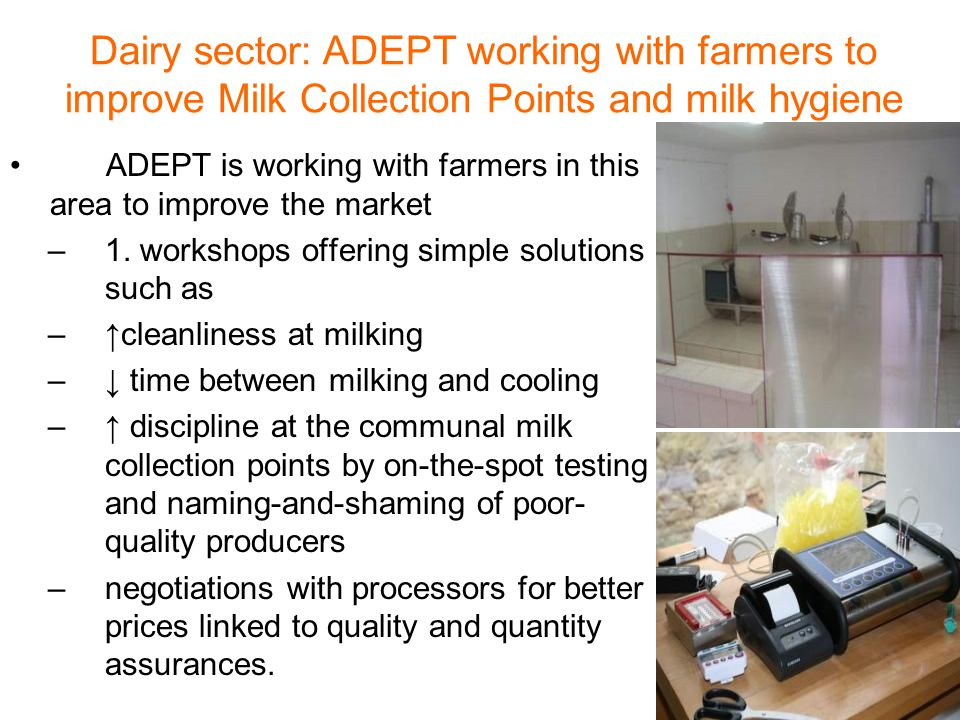 Dairy sector: ADEPT working with farmers to improve Milk Collection Points and milk hygiene ADEPT is working with farmers in this area to improve the market –1.