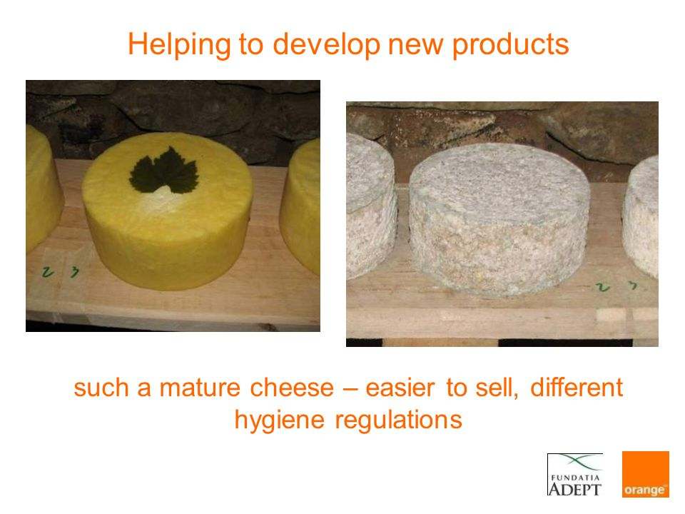 Helping to develop new products such a mature cheese – easier to sell, different hygiene regulations
