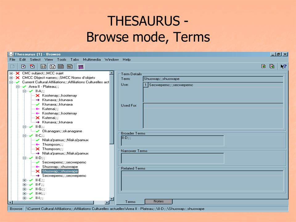 THESAURUS - Browse mode, Terms