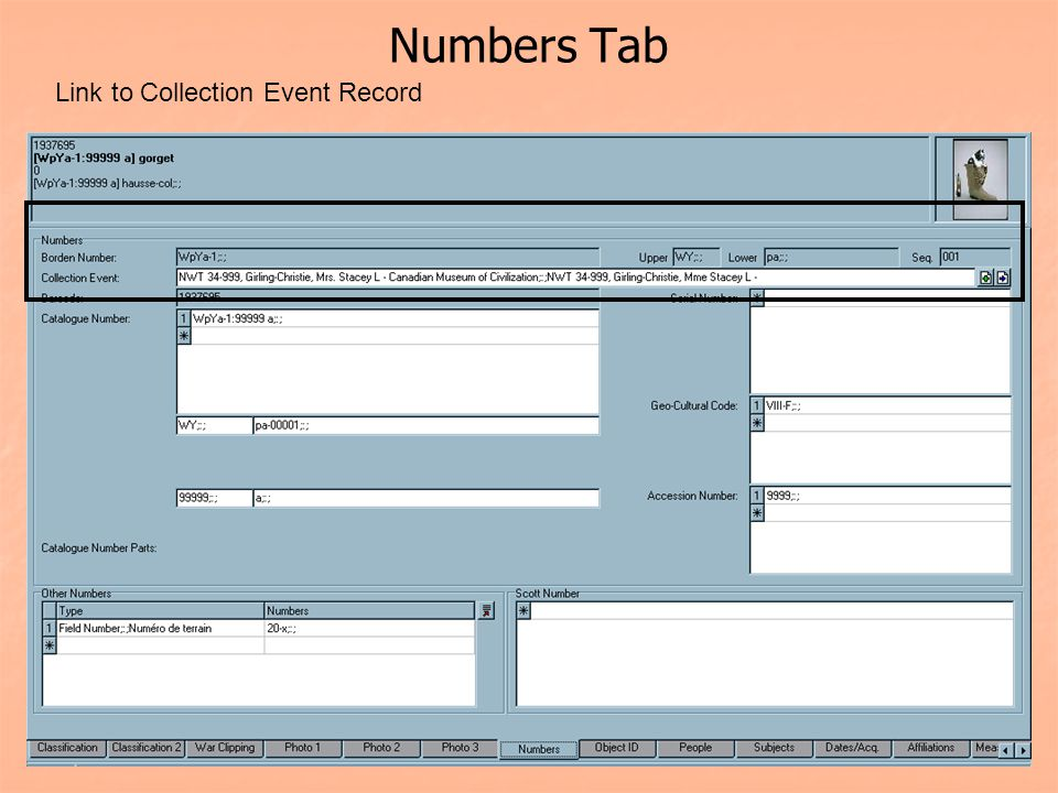 Numbers Tab Link to Collection Event Record