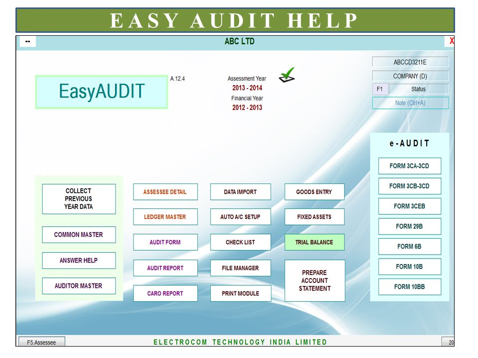 EASY AUDIT HELP