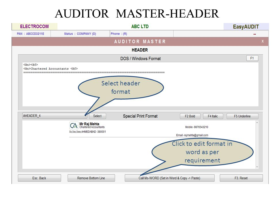 AUDITOR MASTER-HEADER Select header format Click to edit format in word as per requirement