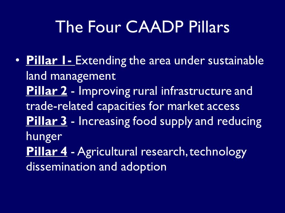 Pillar 1- Extending the area under sustainable land management Pillar 2 - Improving rural infrastructure and trade-related capacities for market access Pillar 3 - Increasing food supply and reducing hunger Pillar 4 - Agricultural research, technology dissemination and adoption The Four CAADP Pillars