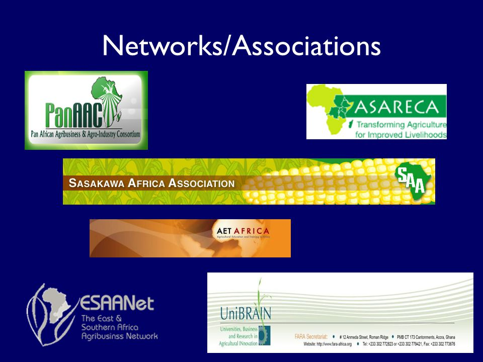 Networks/Associations