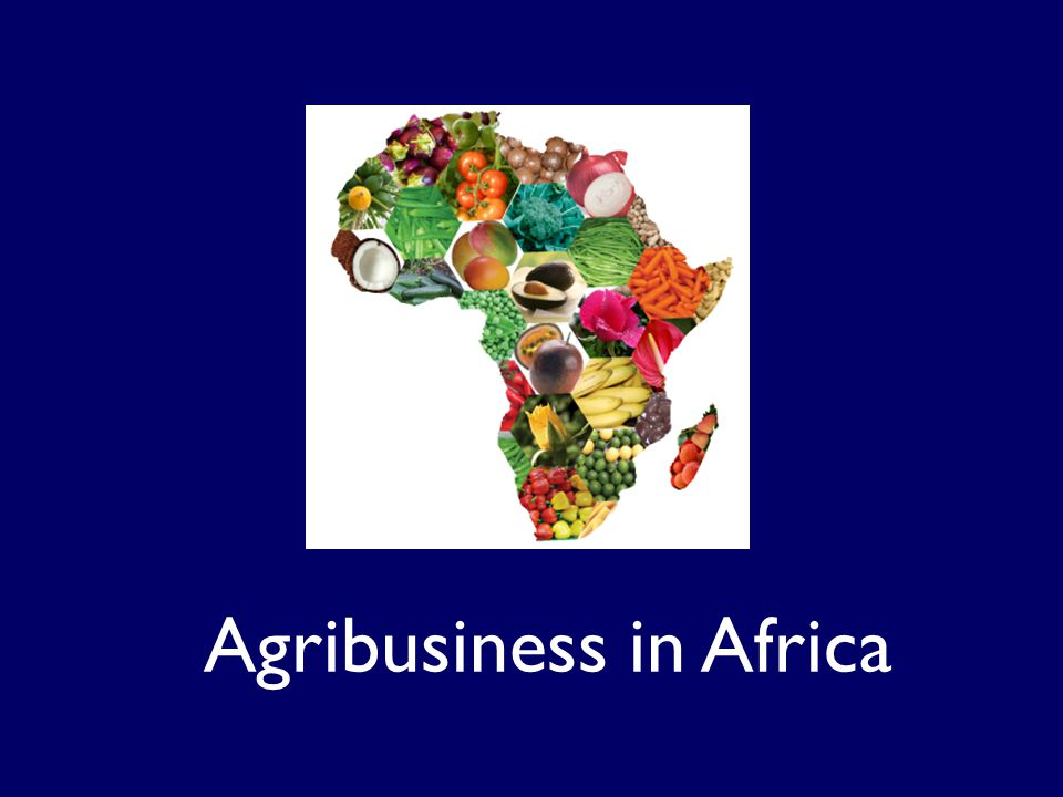 TechnoServe is working in Tanzania, Mozambique, Ghana and Kenya to improve farmer productivity, establish efficient local processing plants, and improve the business environment.