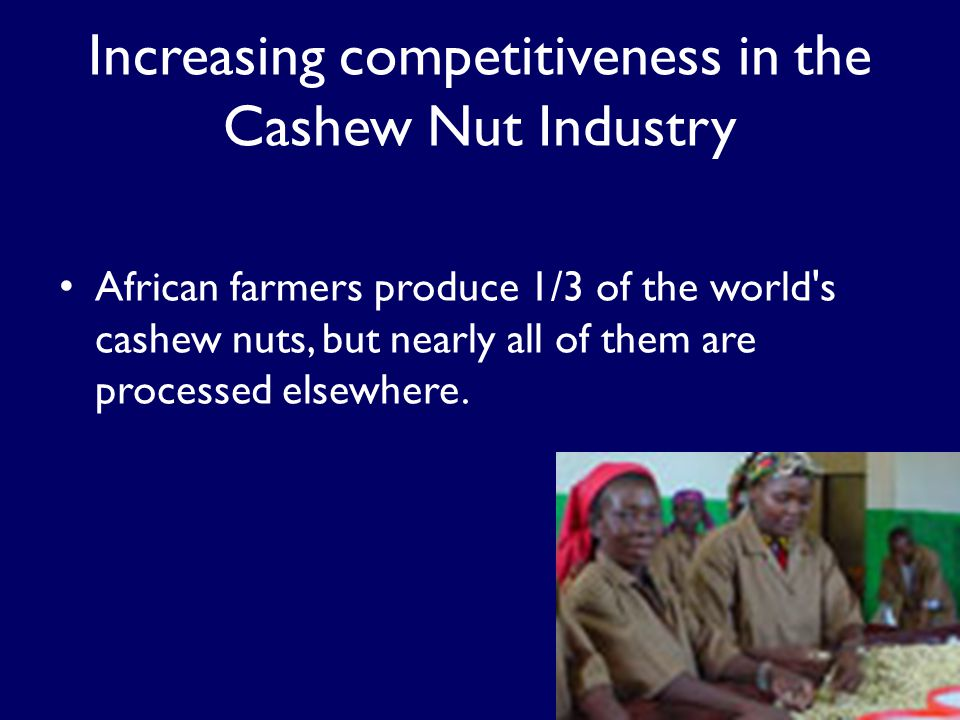 Increasing competitiveness in the Cashew Nut Industry African farmers produce 1/3 of the world s cashew nuts, but nearly all of them are processed elsewhere.