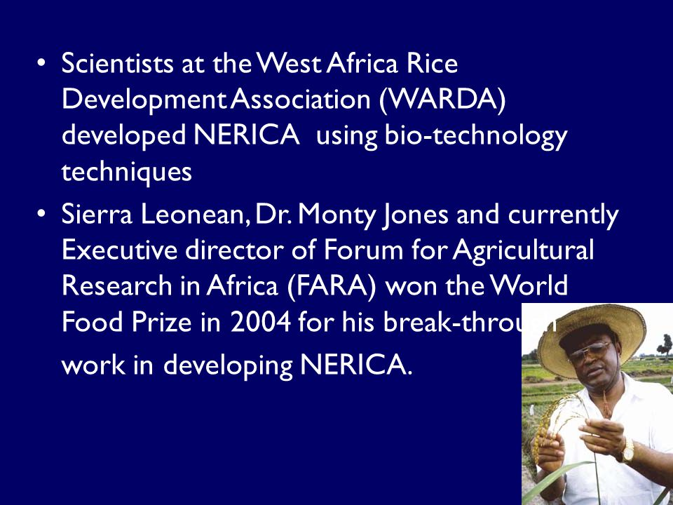 Scientists at the West Africa Rice Development Association (WARDA) developed NERICA using bio-technology techniques Sierra Leonean, Dr.
