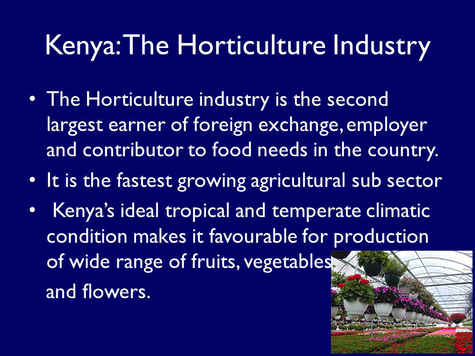 Kenya: The Horticulture Industry The Horticulture industry is the second largest earner of foreign exchange, employer and contributor to food needs in the country.