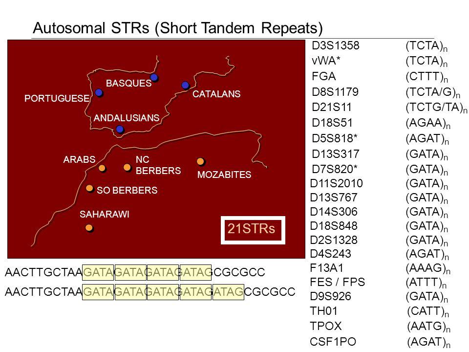 PORTUGUESE BASQUES CATALANS ANDALUSIANS MOZABITES NC BERBERS ARABS SO BERBERS SAHARAWI Autosomal STRs (Short Tandem Repeats) D3S1358(TCTA) n vWA*(TCTA) n FGA(CTTT) n D8S1179(TCTA/G) n D21S11(TCTG/TA) n D18S51(AGAA) n D5S818*(AGAT) n D13S317(GATA) n D7S820*(GATA) n TH01 (CATT) n TPOX (AATG) n CSF1PO (AGAT) n (GATA) n (AGAT) n (AAAG) n (ATTT) n (GATA) n D11S2010 D13S767 D14S306 D18S848 D2S1328 D4S243 F13A1 FES / FPS D9S926 21STRs AACTTGCTAAGATAGATAGATAGATAGATAGCGCGCC AACTTGCTAAGATAGATAGATAGATAGCGCGCC