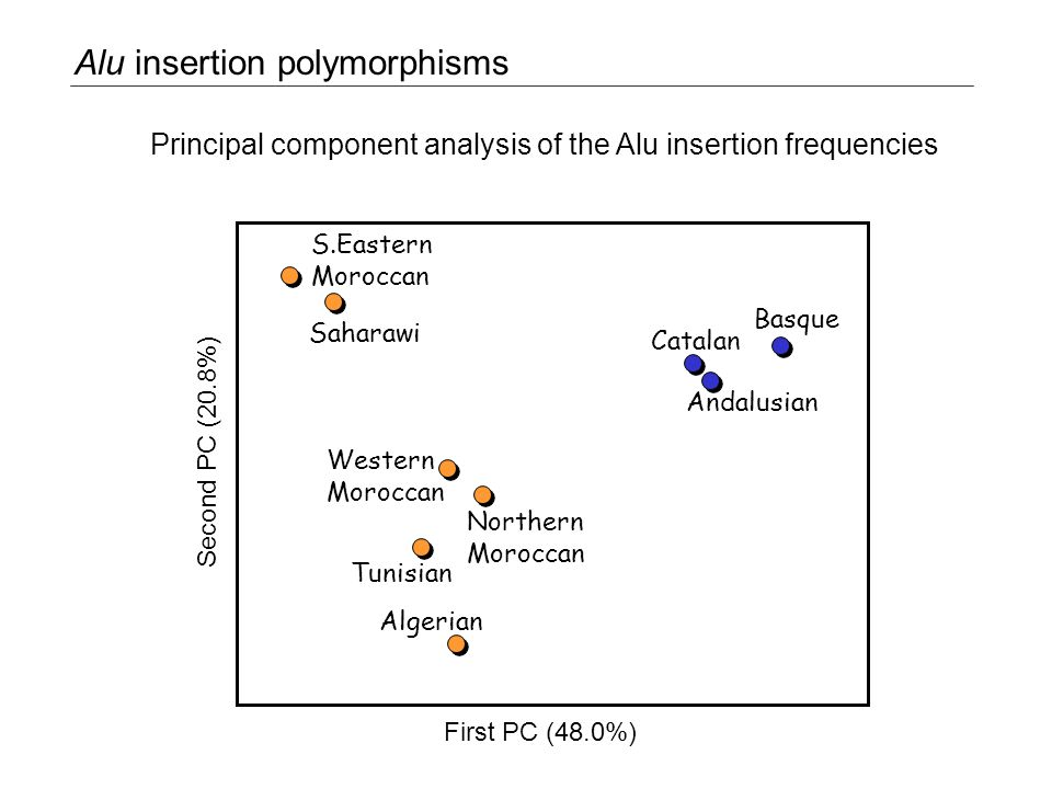 S.Eastern Moroccan Saharawi Western Moroccan Catalan Andalusian Basque Northern Moroccan Tunisian Algerian First PC (48.0%) Second PC (20.8%) Principal component analysis of the Alu insertion frequencies Alu insertion polymorphisms