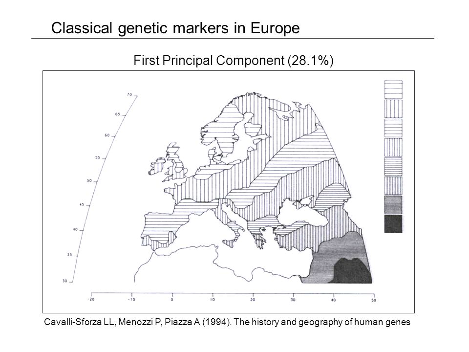 Classical genetic markers in North Africa First Principal Component (36.5%) Bosch E, Calafell F, Pérez-Lezaun A, Comas D, Mateu E, Bertranpetit J (1997) Population history of North Africa: evidence from classical genetic markers Hum Biol 69: 295-311