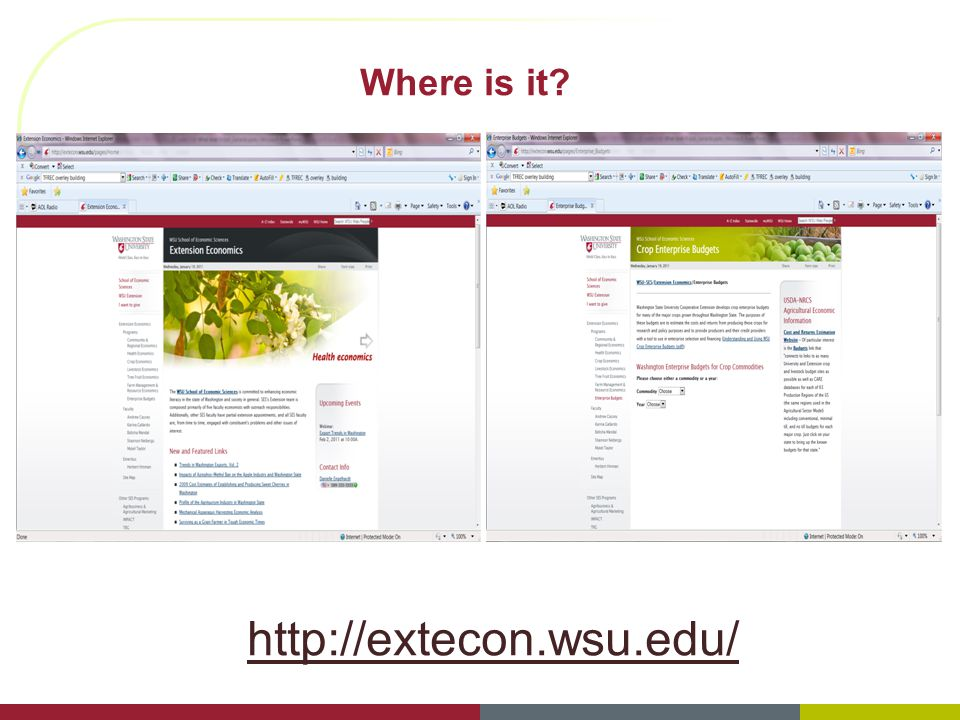 Where is it? http://extecon.wsu.edu/