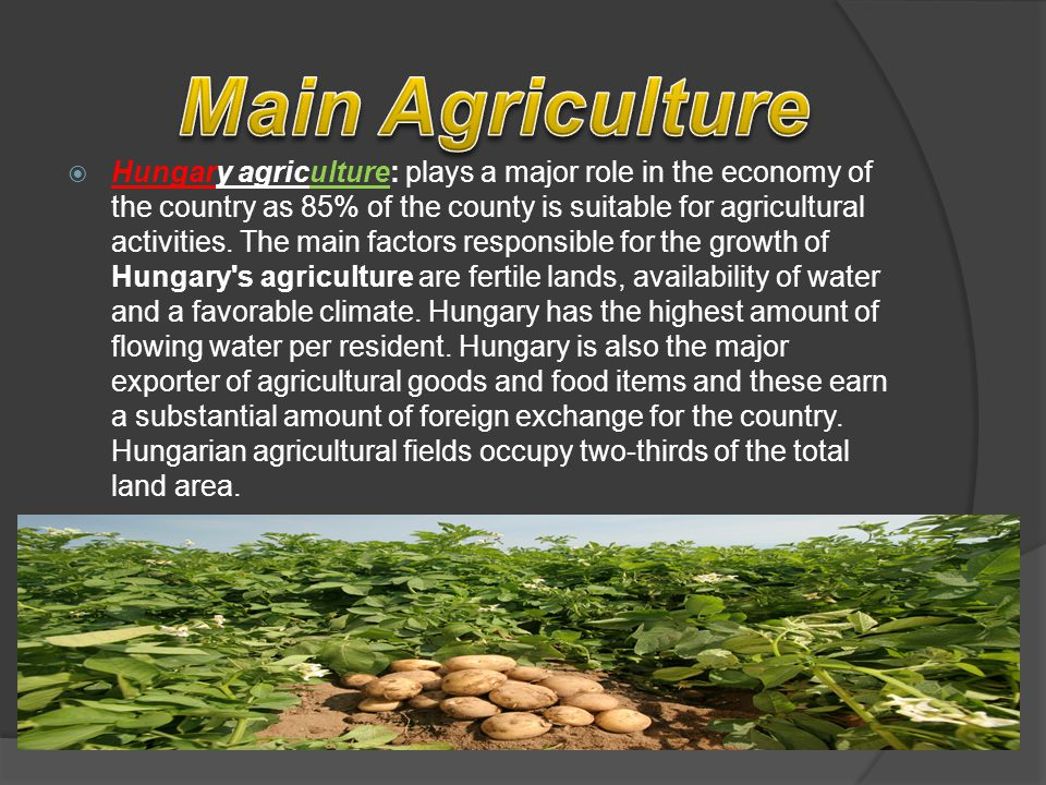 Hungary agriculture: plays a major role in the economy of the country as 85% of the county is suitable for agricultural activities.