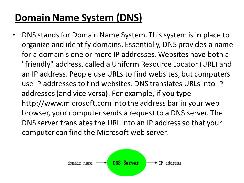 Domain Name System (DNS) DNS stands for Domain Name System. This system is in place to organize and identify domains. Essentially, DNS provides a name