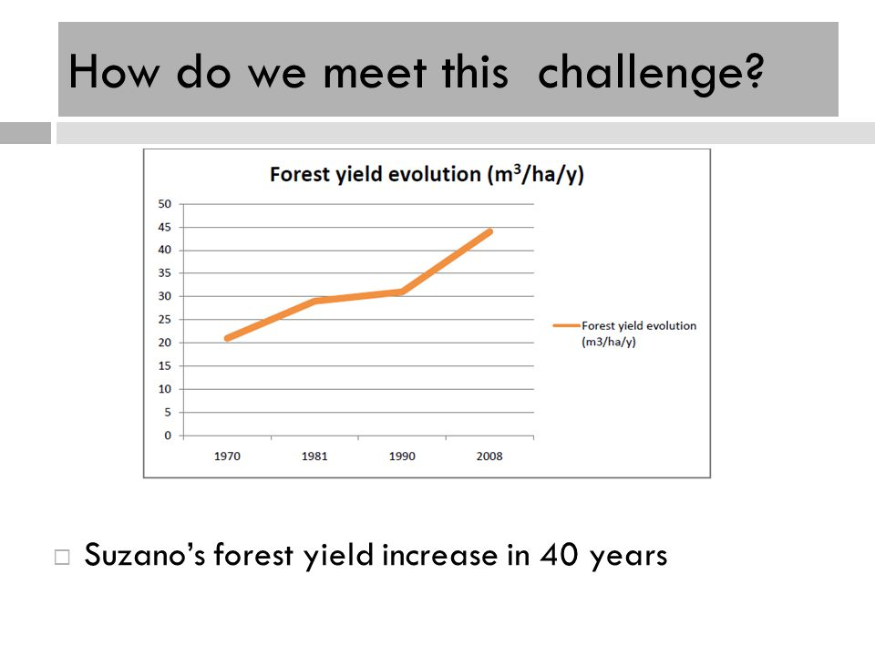 How do we meet this challenge? Suzanos forest yield increase in 40 years