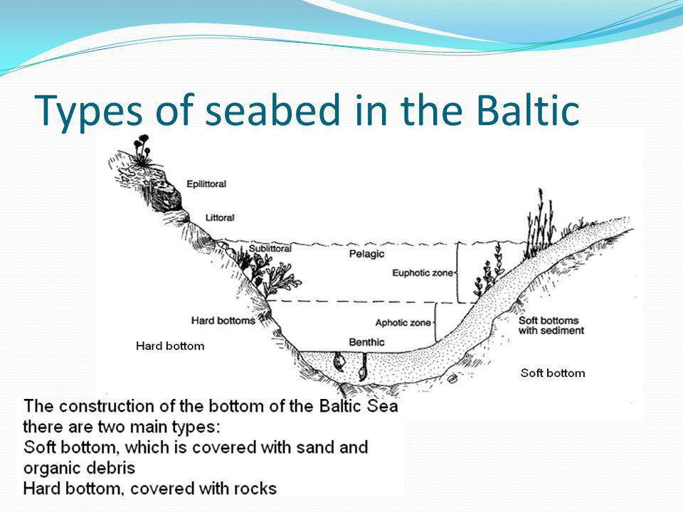 Types of seabed in the Baltic