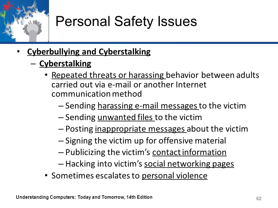 Personal Safety Issues Cyberbullying and Cyberstalking – Cyberstalking Repeated threats or harassing behavior between adults carried out via e-mail or