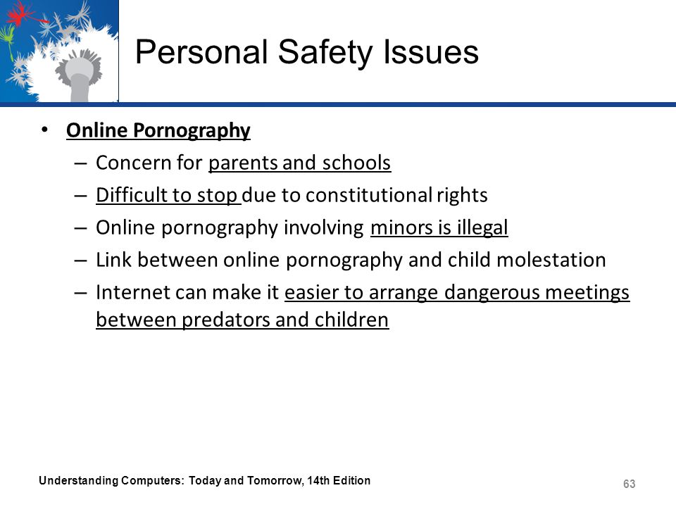 Personal Safety Issues Online Pornography – Concern for parents and schools – Difficult to stop due to constitutional rights – Online pornography invo