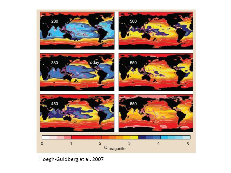 Hoegh-Guldberg et al. 2007