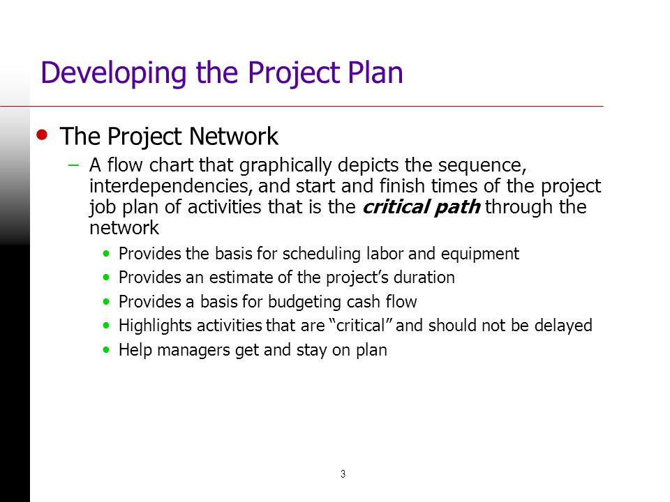 3 Developing the Project Plan The Project Network –A flow chart that graphically depicts the sequence, interdependencies, and start and finish times o
