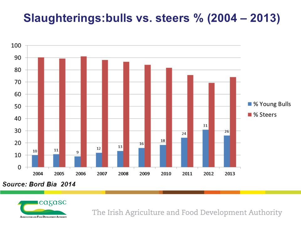 Slaughterings:bulls vs. steers % (2004 – 2013) Source: Bord Bia 2014
